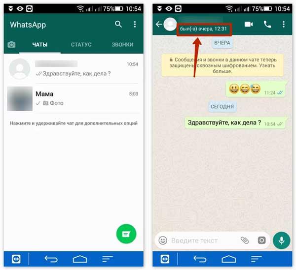 последнее время открытия WhatsApp
